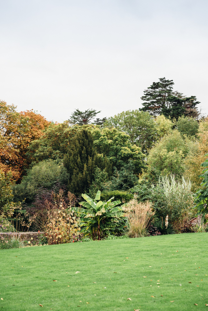 Langford Fivehead - Somerset