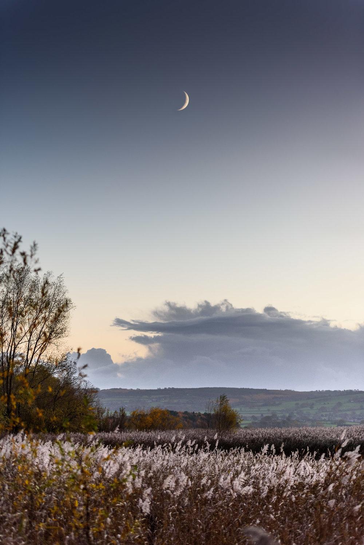 Chew Valley Lake, UK