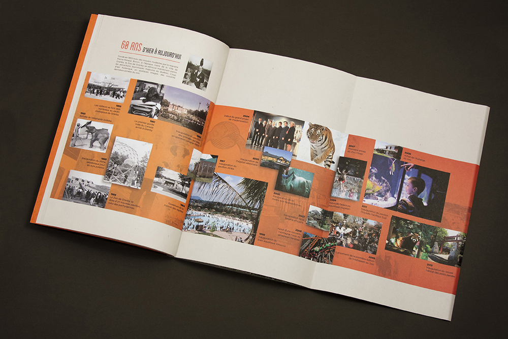 Merlicom_Book2014.jpg