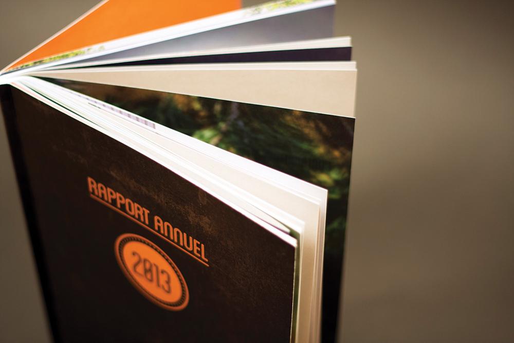 Merlicom_Book2014213.jpg