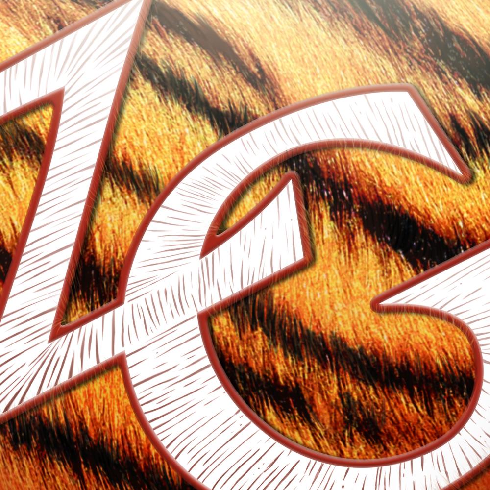 Branding_ZG_Closeup1.jpg