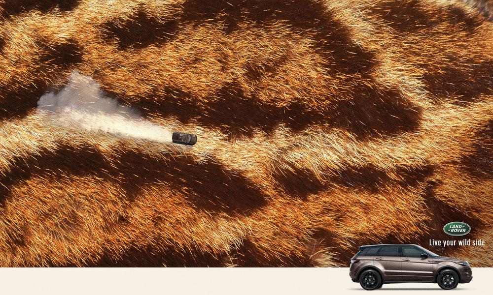 Land_rover-2.jpg