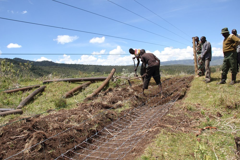 One of Rhino Ark's fences under construction at Mt Eburu, Kenya