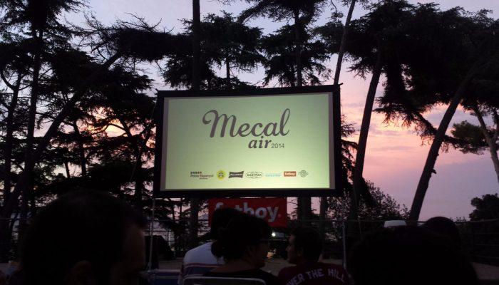 Mecal Ai r10.jpg