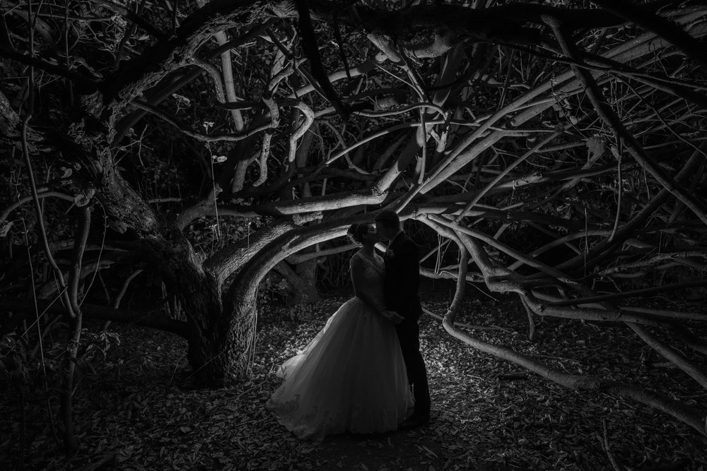 Elleni and Jerome - Top End Weddings