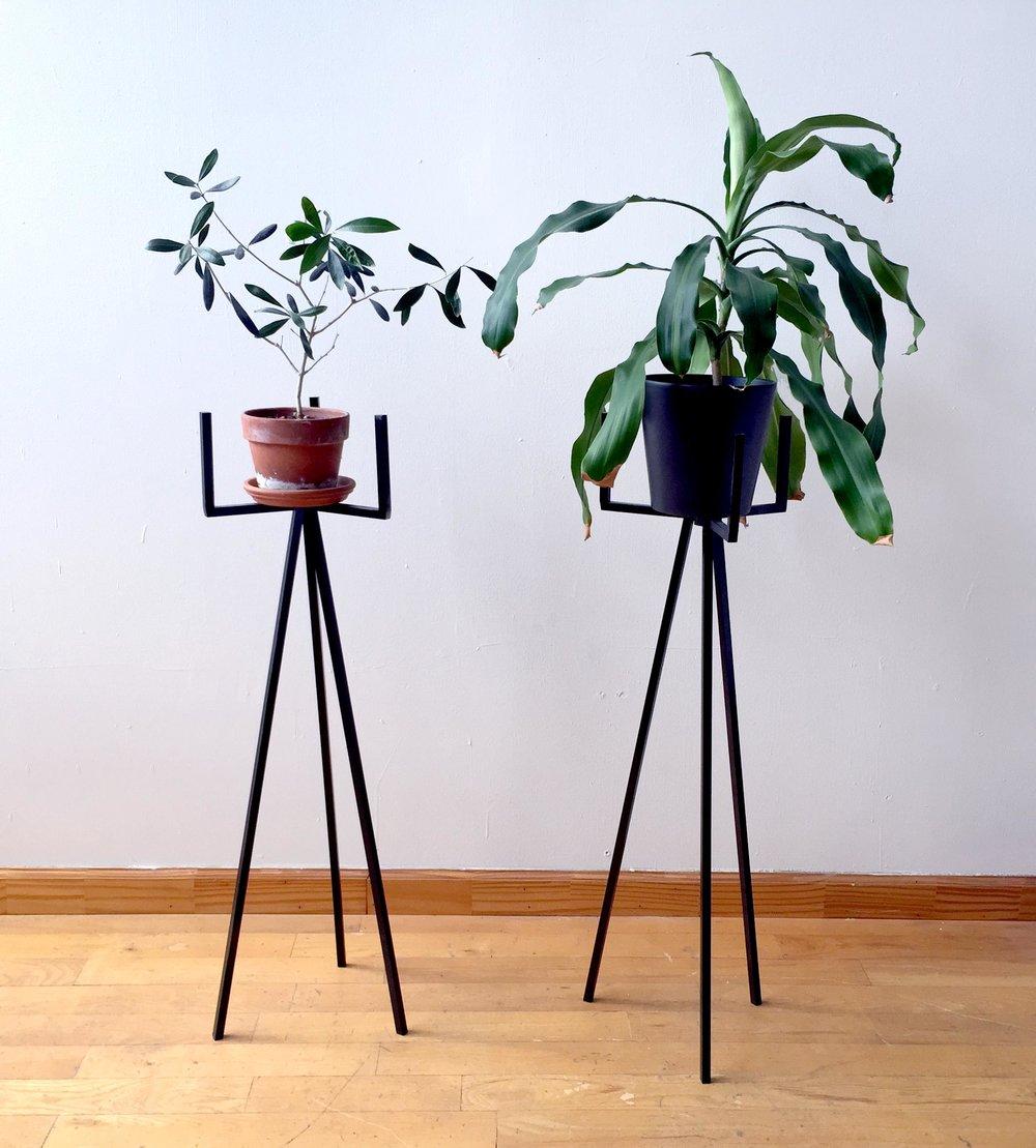 PlantStands1_IMG_1334.jpg