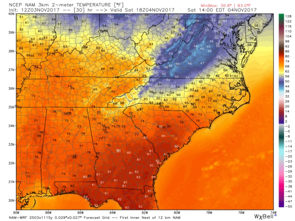 Image 2. North American Mesoscale (NAM) Model Forecasted temperatures for 2 p.m. Saturday.