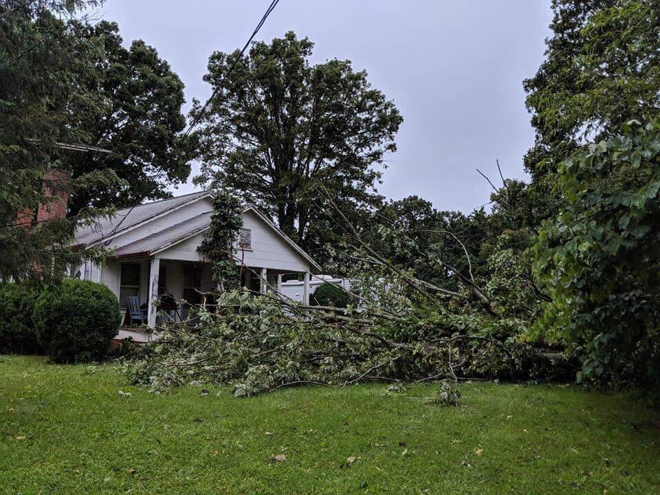 Wind damage from Microburst, Frank Whisnant Rd (Burke County)