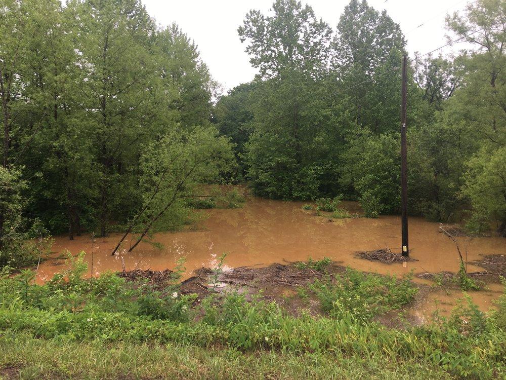 Goose Creek 3.JPG