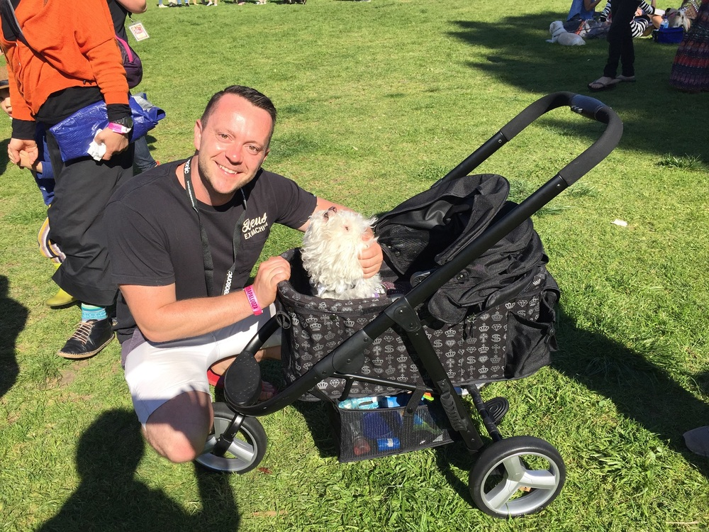 Walt Collins, host of Animal Extra on Channel 10, seen here with Elmo, who loves being patted inside the doggy pram