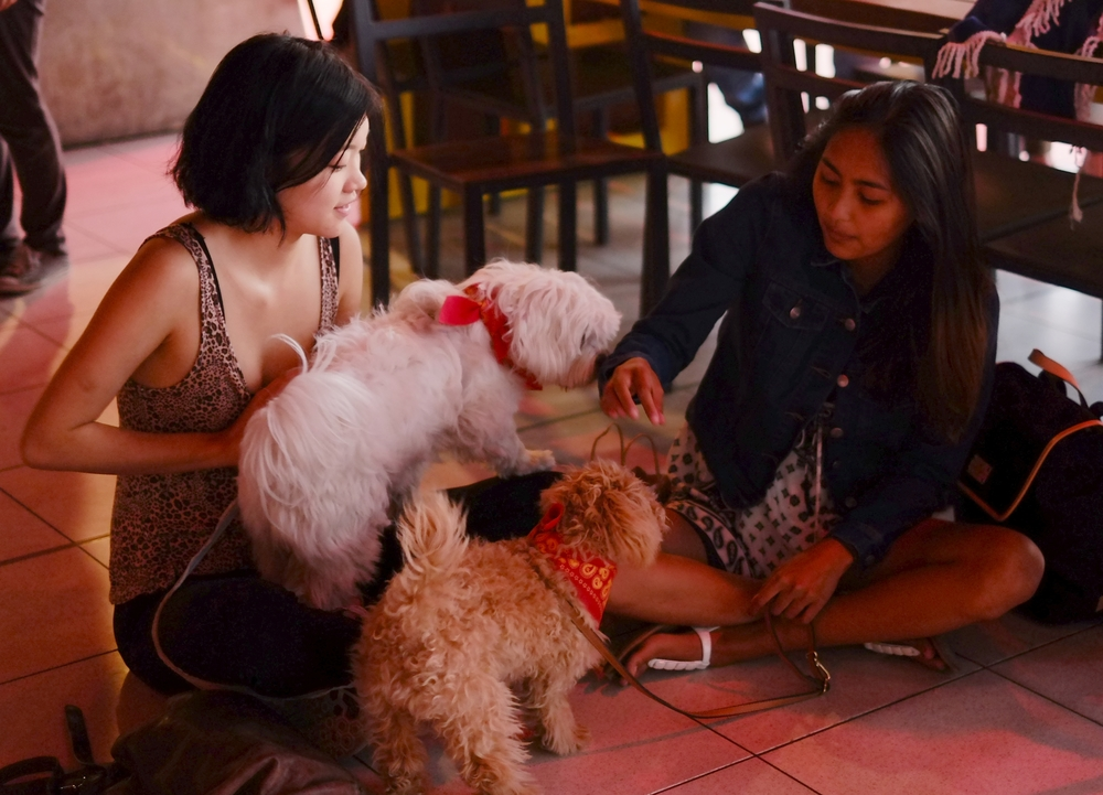Cassie, Monique, Noodle and Annie, waiting for the movie to start