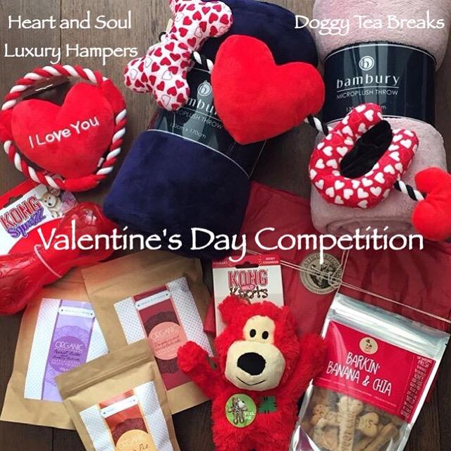 Valentine's Day Doggy Gift Hamper