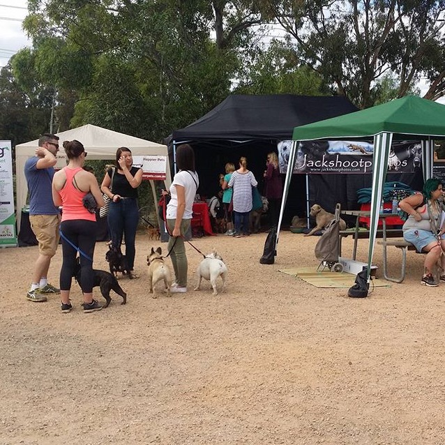 The Pets Market @ CERES runs every last Sunday of the month