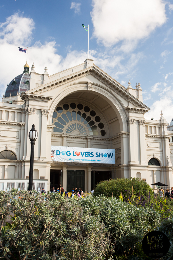 Dog Lover Show - Exhibition Building