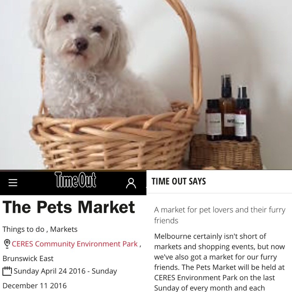 The Pets Market in 'Time Out'