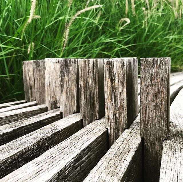 Silvered timber against these lush grasses, both complementing each other beautifully 👌🏼