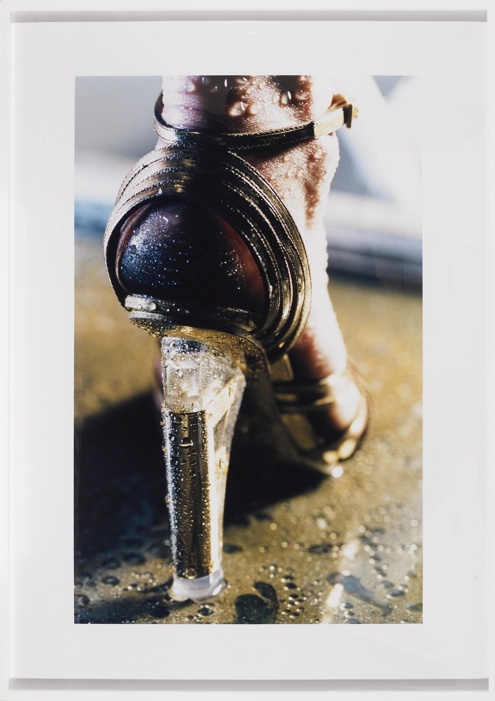 Goldie, 2004,   C print, 40 x 26 inches