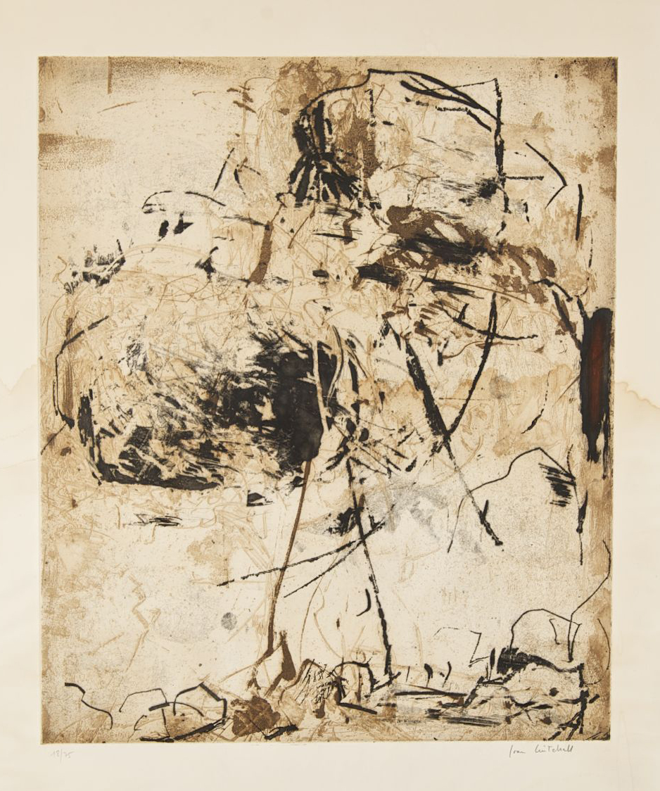 Sunflower VI,  Etching on paper, 1972,35 1/2 x 25 inches