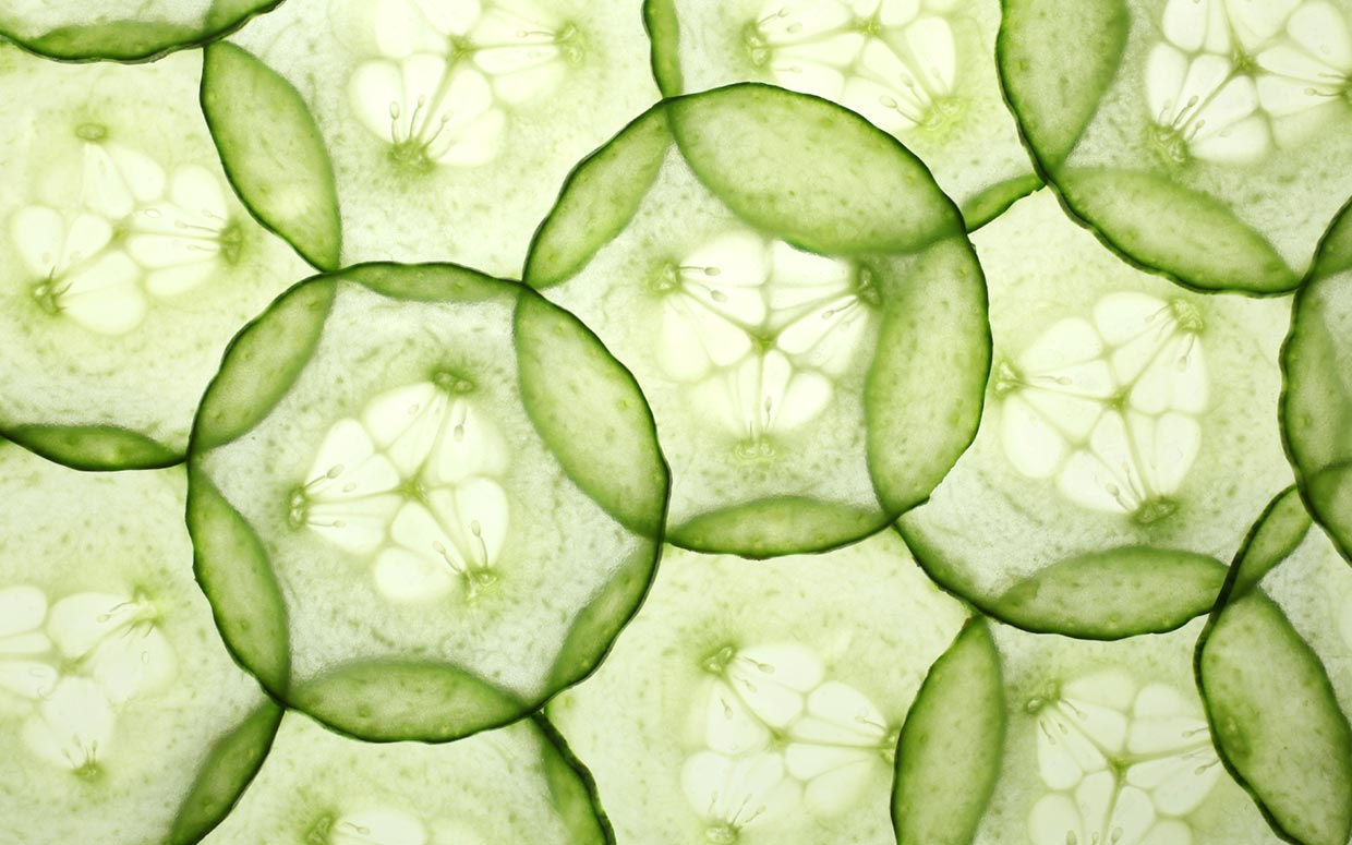 the food remedy cucumber