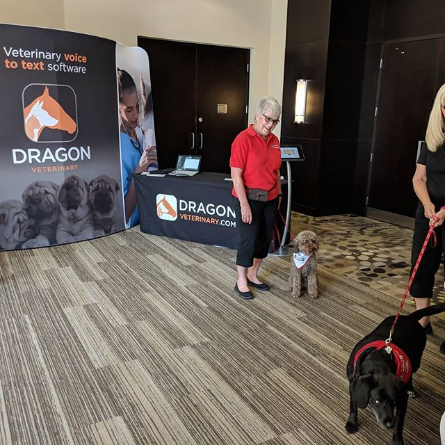 Lots of great four legged friends at the ve+ summit. So great of #stjohnambulancetherapydogs to come out. #vetsummitcanada