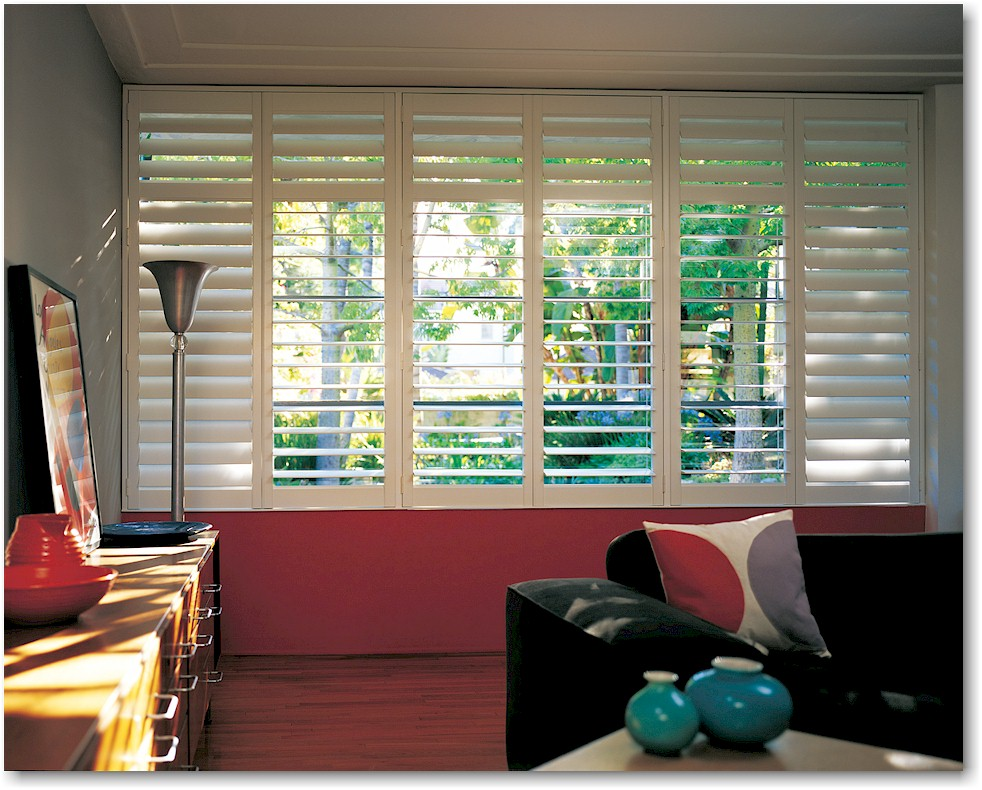 NEWSTYLE HYBRID WINDOW SHUTTERS    A low price, modern look and upgraded materials make these Newstyle Hybrid Window Shutters from Hunter Douglas a steal. While they're not made of the traditional wood found in most window shutters, these shutters still boast the classic look of hardwood panes while offering more than 250 design options for both windows and doors! Click on the photo above for additional information.