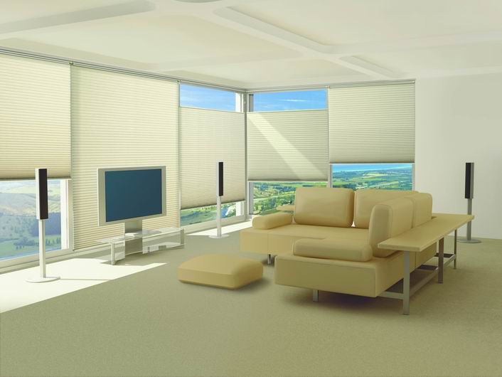 Energy_efficient_shade. SILHOUETTE SHADINGS · PIROUETTE SHADINGS ·  DUETTE ARCHITELLA HONEYCOMB SHADES · VIGNETTE MODERN ROMAN SHADES ...