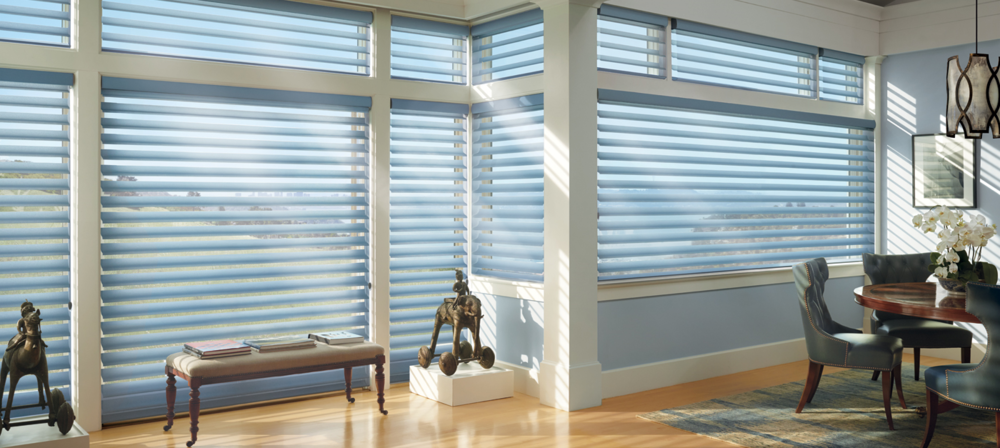 SILHOUETTE SHADINGS    Looking for something practical and beautiful? Silhouette Shadings are a great option. These window shades play with the light as it enters your home, casting beautiful silhouettes and shadows across any room. Click on the photo above for more product details.