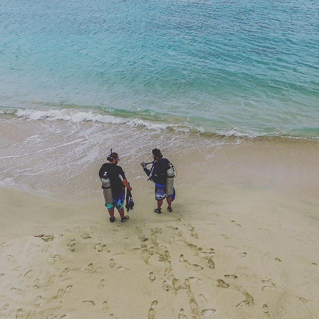 An aerial shot from our session with @sweetbottomdivecenter in St Croix.
