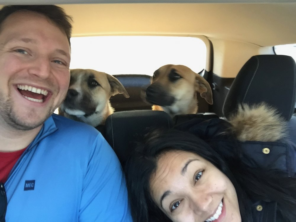 With Tolfino and Yuki, our friends Sam and Josh's beautiful adopted pups enroute to Yosemite!