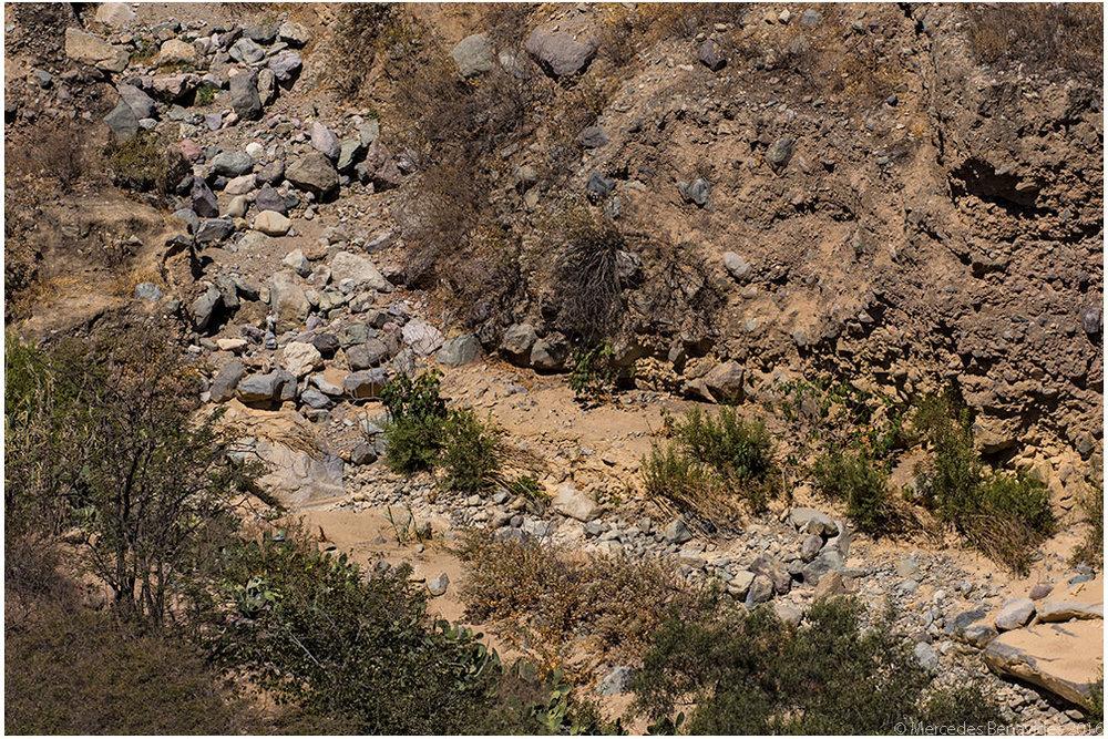 Quebrada/Deep ravine
