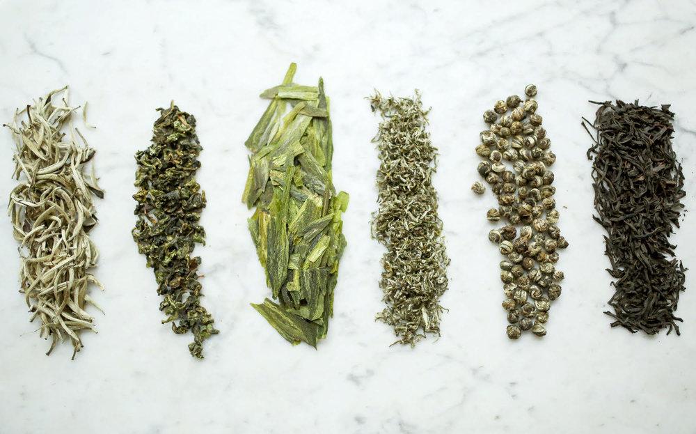 leafy green 2.jpg