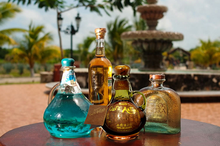 Tequila+Expert+for+Event+Private+Corporate+Home+Tasting+Service+Mezcal.jpg