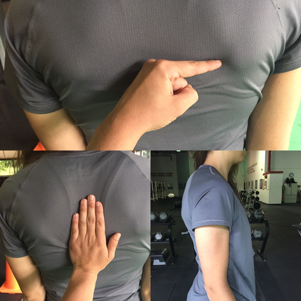 Flat Thoracic Spine, Shoulder Blades Tipped Forward