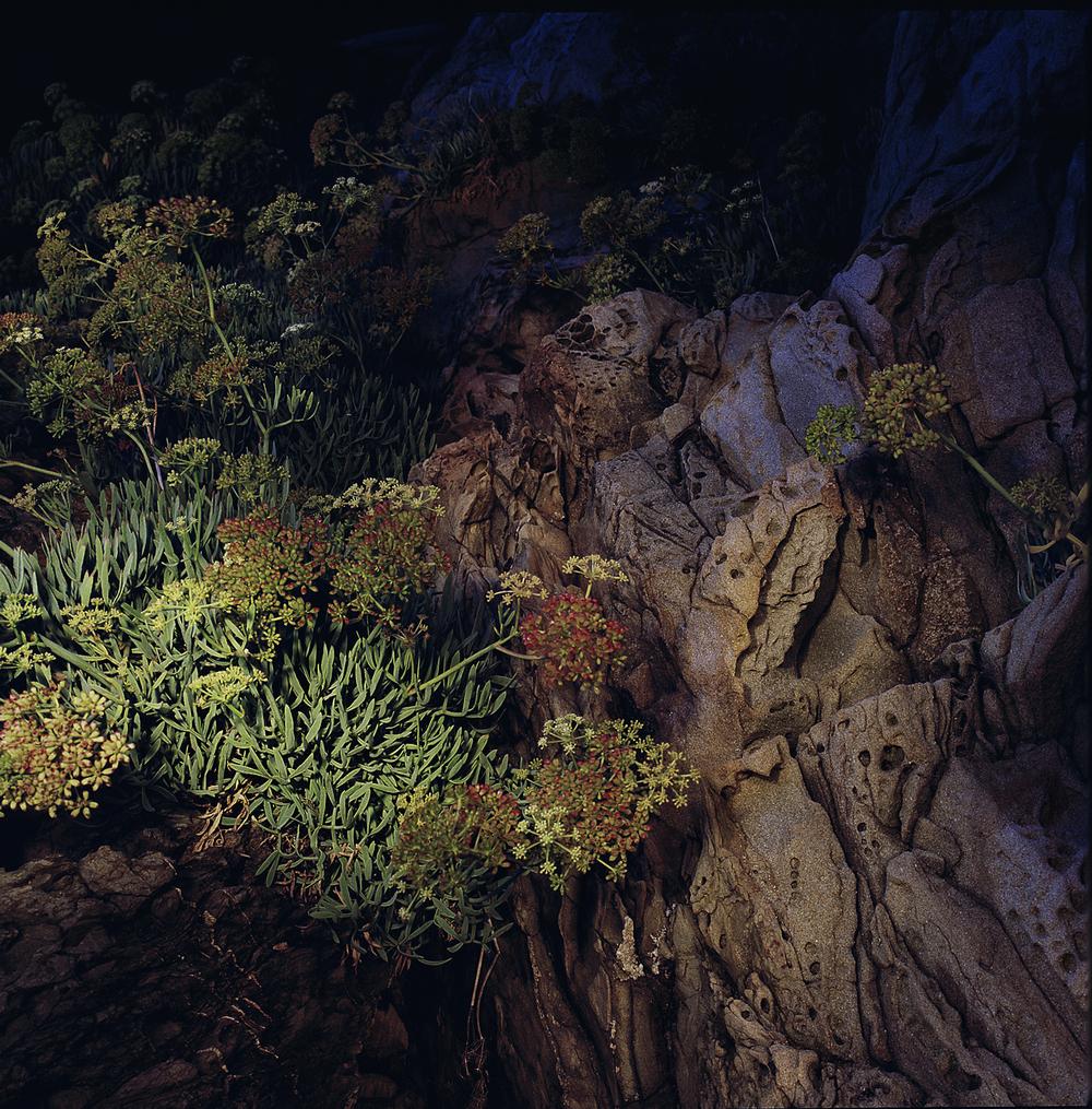 Traveling Light - Riomaggiore, Italy