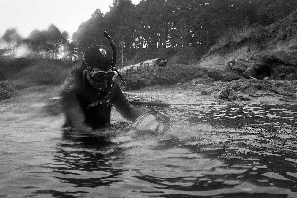 Abalone_dive_093.jpg