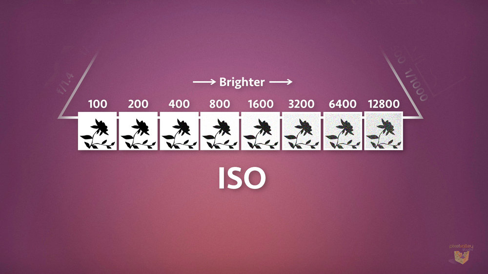 Common ISO settings in 1-stop increments.