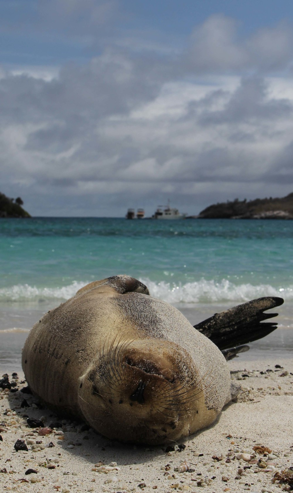 The best part of Galapagos!