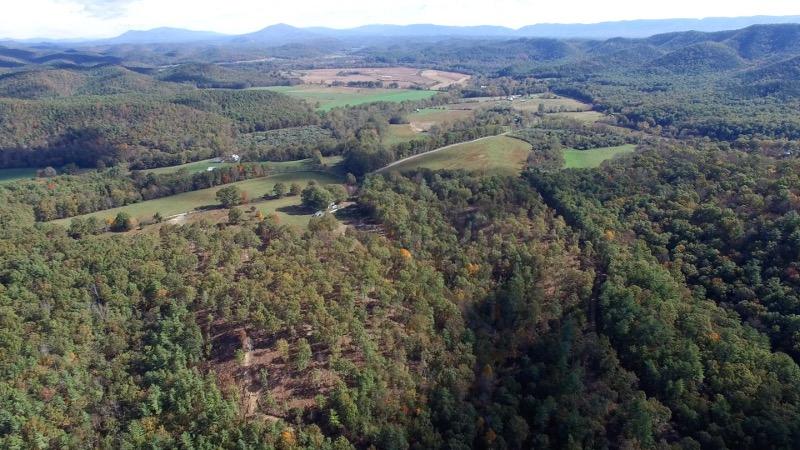 Nimrod Aerial 11.jpg
