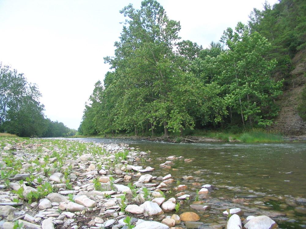 3/4 Mile of Cowpasture River - Upriver