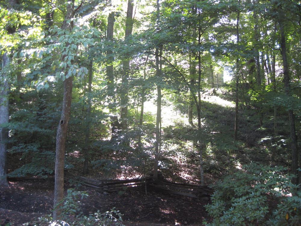 Homestead North Ridge Bank & Walking Trail.JPG