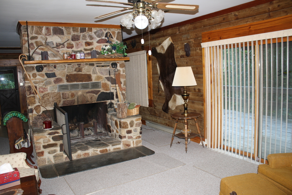 Living Room + Fireplace.jpg