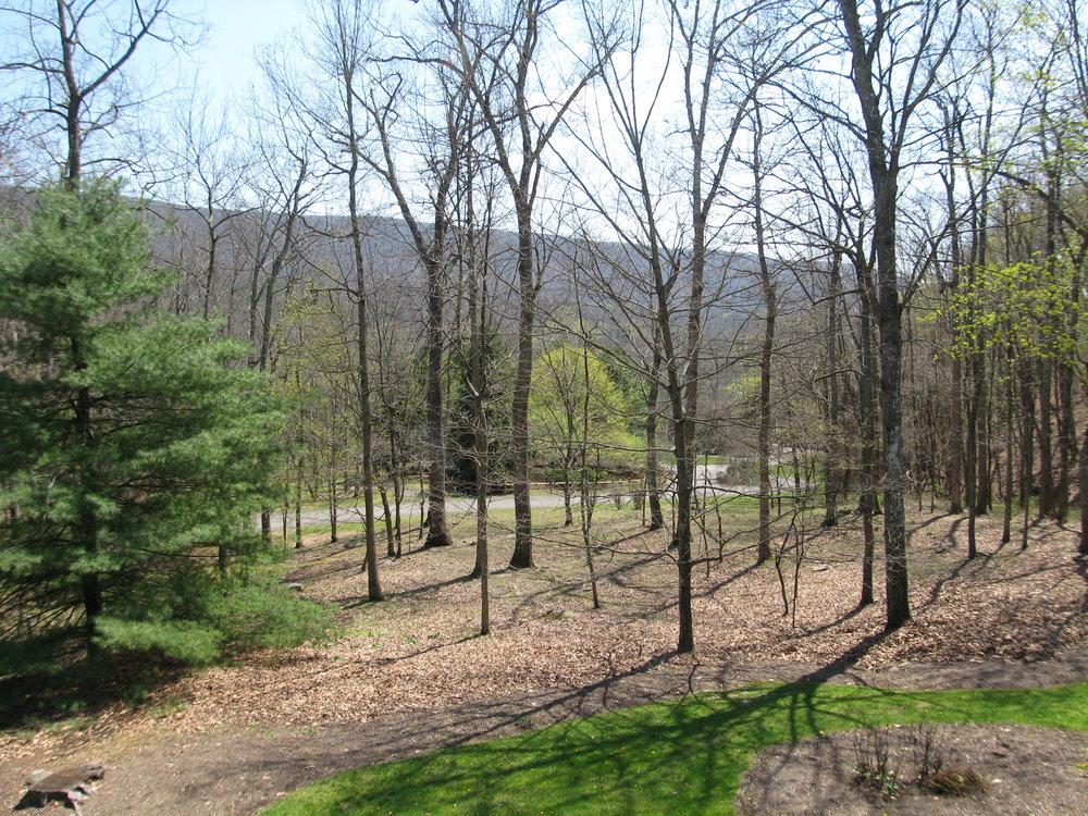View to east toward Homestead Resort