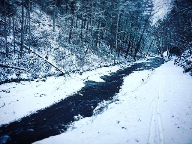 Great day for #crosscountryskiing by the warm springs run . . .  #ruralamerica #countryliving #usa #virginiafarms #virginia #bathcountyva #jacksonrivervalley #hotspringsva #omni #thehomestead  #alleghenymountains #shenandoah #realestate #bestplacestolive #lovewhereyoulive  #vacationrental #virginiamountainhomes #bacovaproperties
