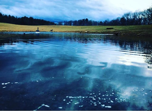 Waiting for ice #pondhockeyseason . . . .  #ruralamerica #countryliving #usa #virginiafarms #virginia #bathcountyva #jacksonrivervalley #hotspringsva #omni #thehomestead  #alleghenymountains #shenandoah #realestate #bestplacestolive #lovewhereyoulive  #vacationrental #virginiamountainhomes #bacovaproperties