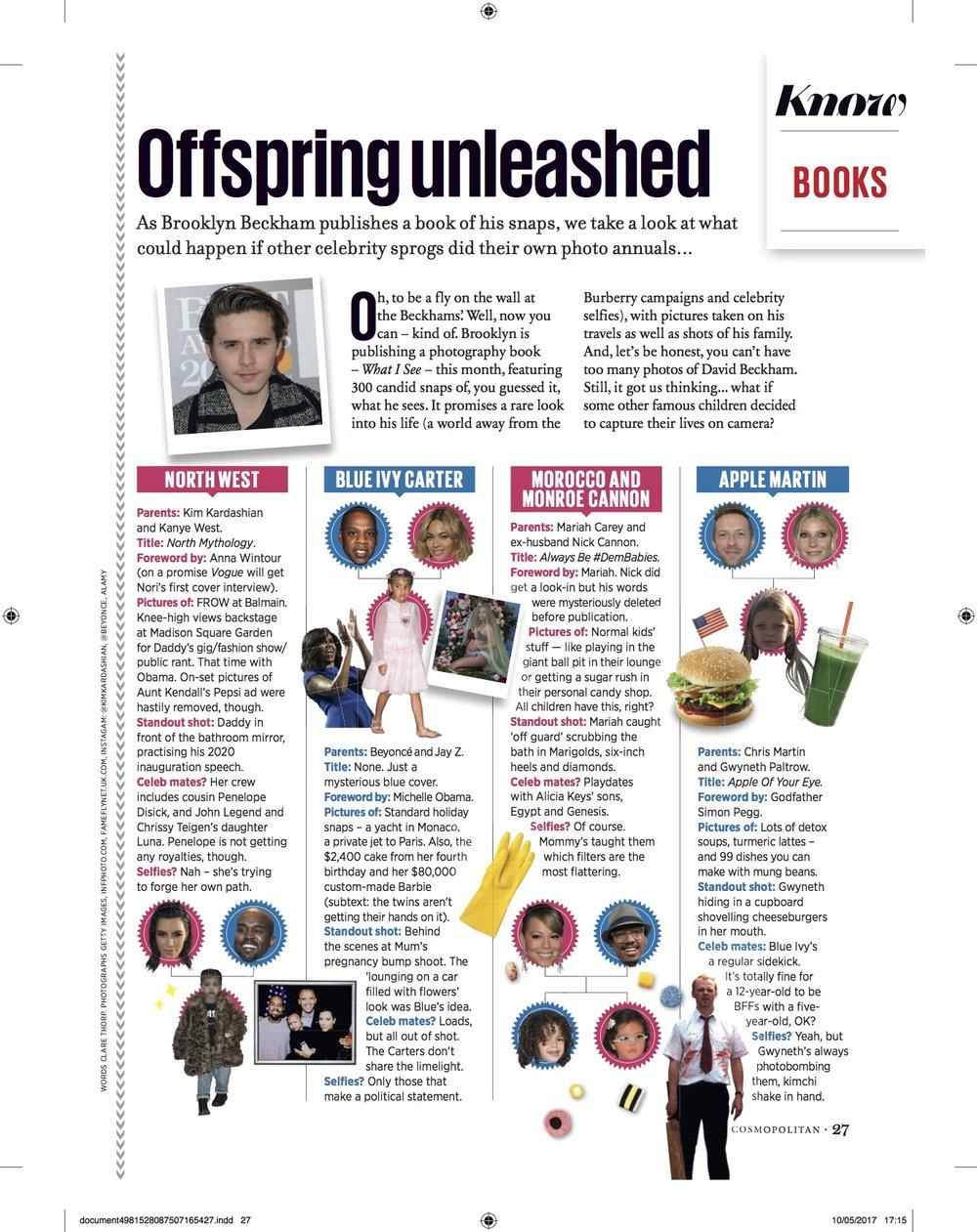 Cosmopolitan Brooklyn book.jpg