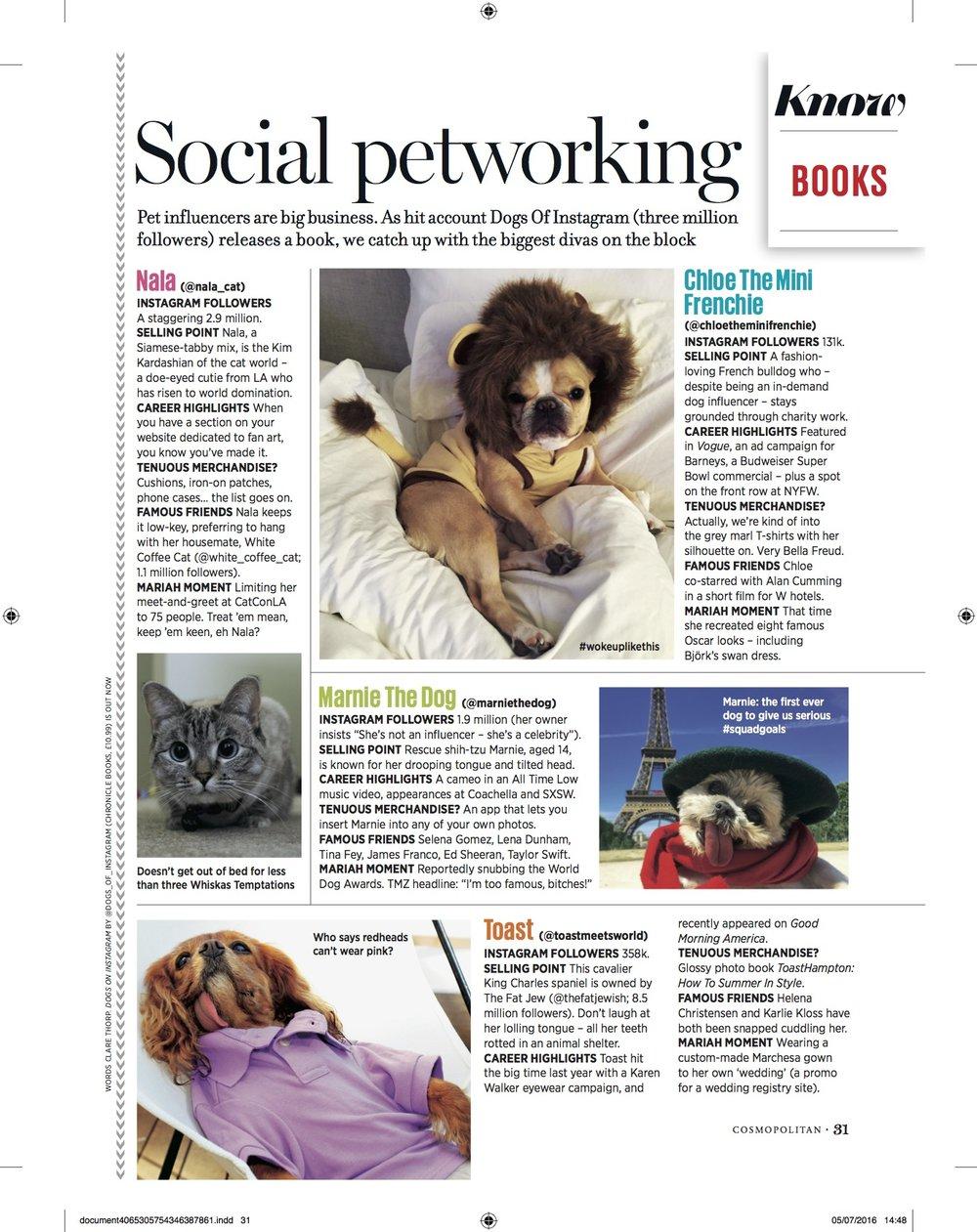 Cosmopolitan Insta pets.jpg