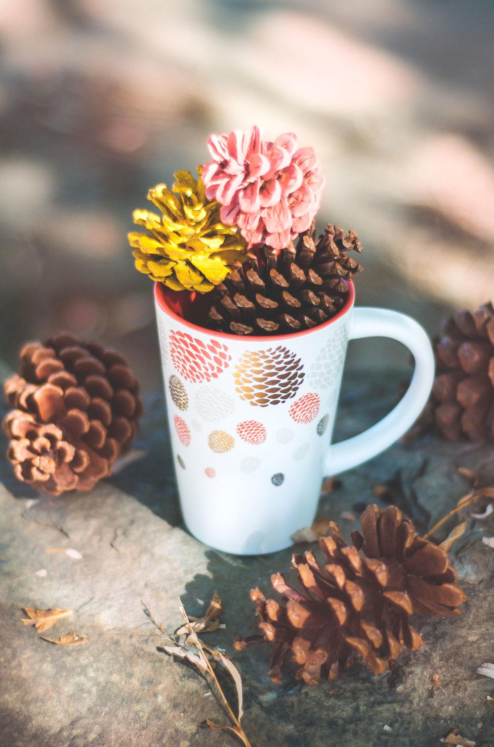 pine-mug.jpg