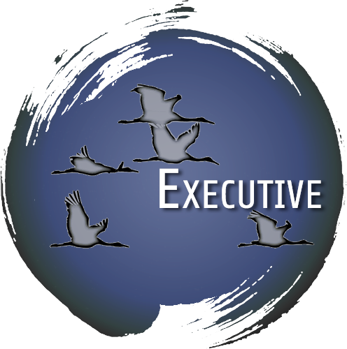 executive-sil-color.png