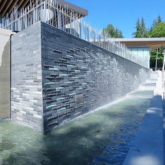 "VANCOUVER AQUARIUM<a href=""/vancouver-aquarium""></a><strong>VANCOUVER BC</strong>"