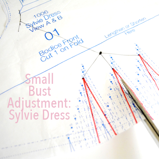 Small Bust Adjustment: Sylvie Dress - City Stitching with Christine Haynes